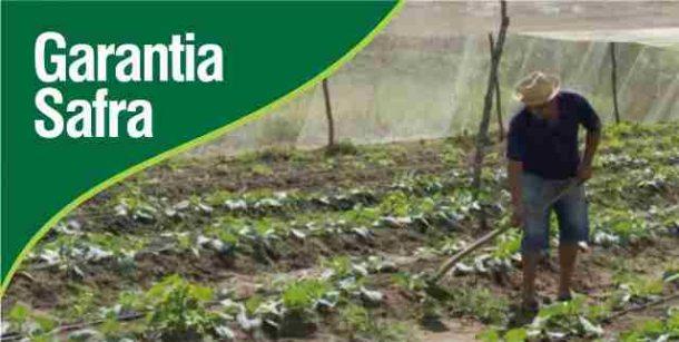 Atenção agricultores de Paulista e São Bento