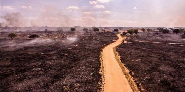 Incêndio de grandes proporções destrói cerca de 6 quilômetros de vegetação, em Boa Ventura na Paraíba