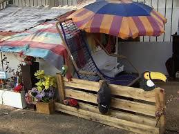 Morador de rua faz casa de papelão com varanda e jardim em Goiânia